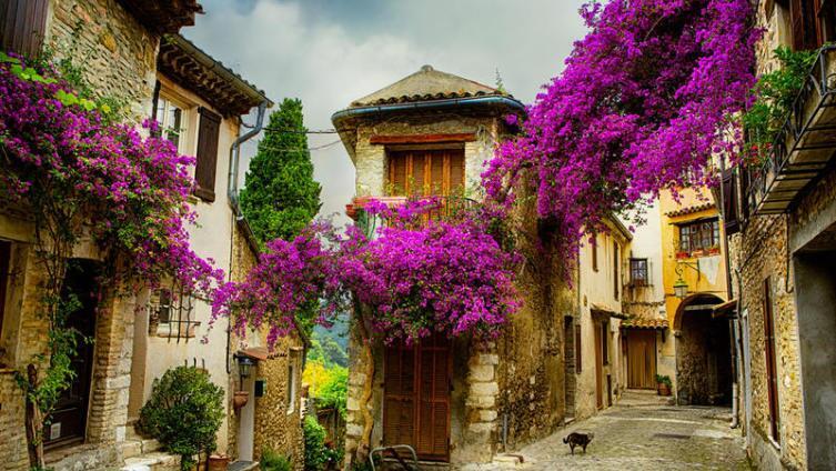 Путешествие по Франции. В чем истинная красота Прованса?