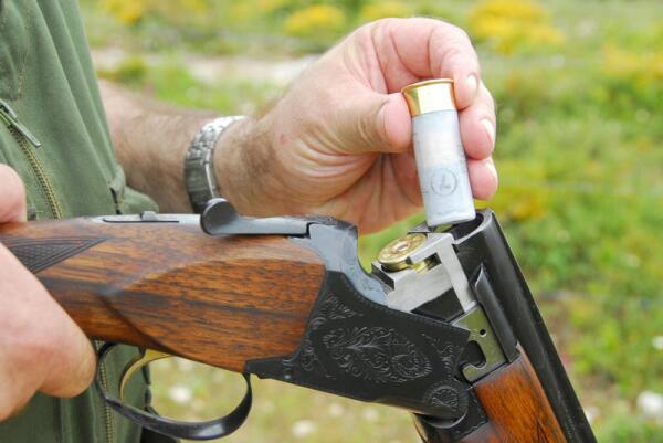 Старое ружье. Почему оно выстрелило?