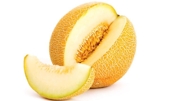 Райский плод - дыня. За что её ценят?