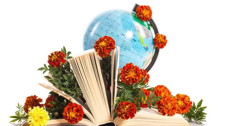 Как 1 сентября стали отмечать День Знаний?