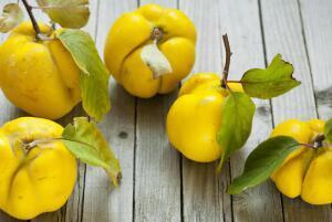 Айва - яблоко раздора, плод любви или символ здоровья?