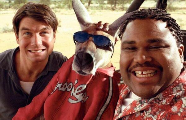 Цирковой кенгуру - герой кинокомедии