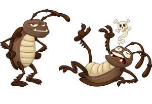 Как избавиться от тараканов, клопов и муравьев?