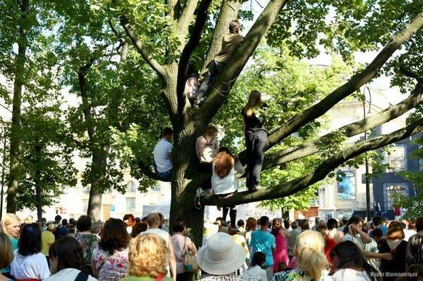 Зрители сидели даже на деревьях