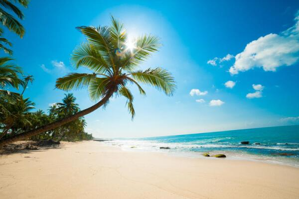 Летите на пляж? Рекомендации по покупке путевок к морю
