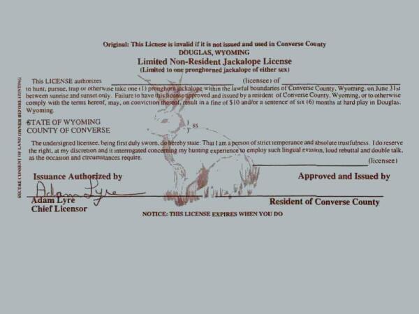 Лицензия (скрин)