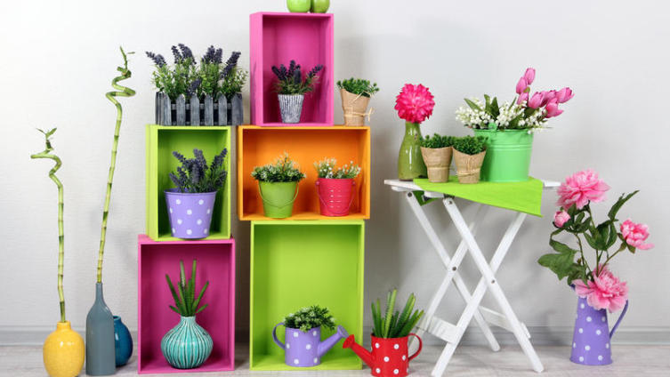 Как устроить капельный полив домашних растений?