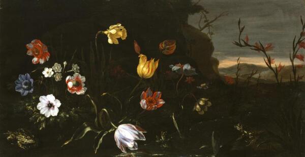 Джузеппе Рекко, Цветы на пруду и лягушки, Walters Art Museum, Балтимор, США