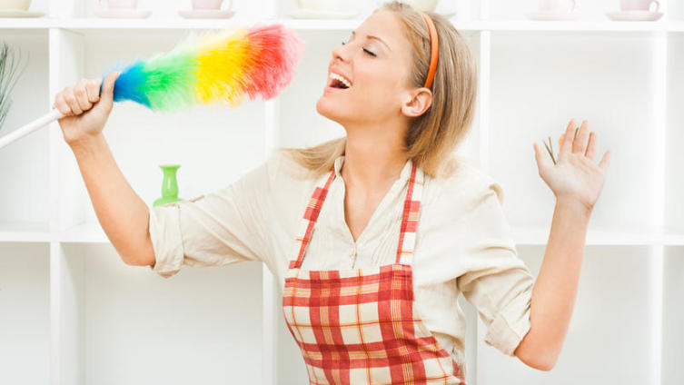 Супер-хозяйка, или Что такое уборка по системе Flylady?
