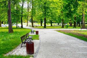 Парк или храм - что важнее для городского жителя?