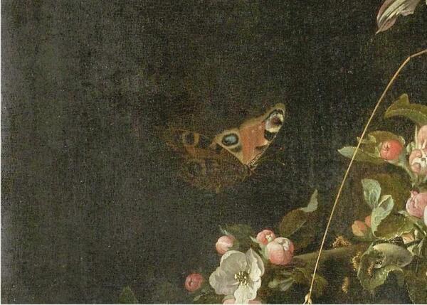 Абрахам Мигнон, Натюрморт с кошкой, фрагмент «Бабочка»