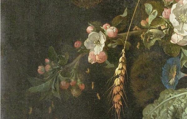 Абрахам Мигнон, Натюрморт с кошкой, фрагмент «Личинки выпадают из кокона»