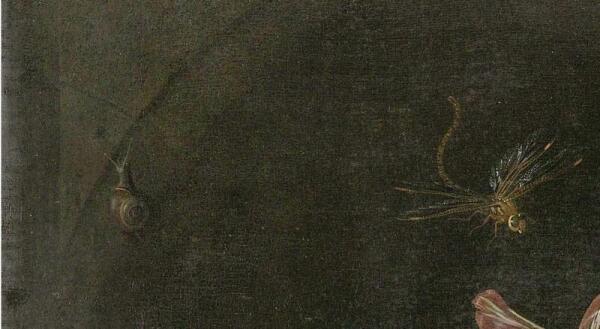 Абрахам Мигнон, Натюрморт с кошкой, фрагмент «Стрекоза и улитка»