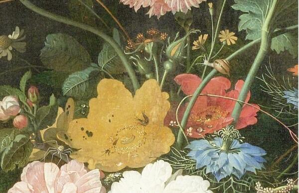 Абрахам Мигнон, Натюрморт с кошкой, фрагмент «Улитка, паучок, двухвостки»