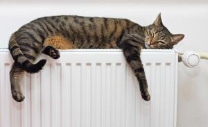 В чём преимущества двухтрубной системы отопления?