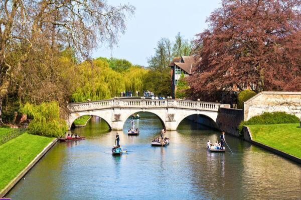 Стоит ли учиться в Оксбридже?