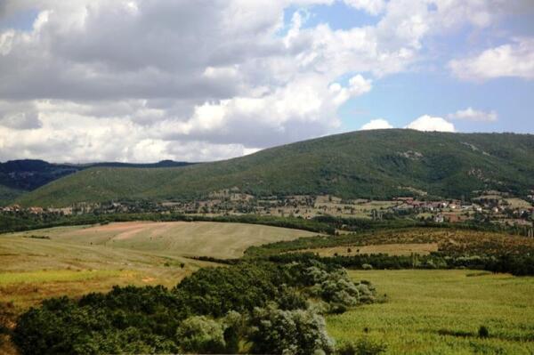 Холмы, перелески и поля