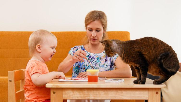 О женщинах, детях и кошках. Кто и во что играет?