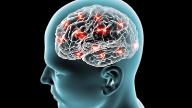 Что такое мозг и как использовать его на 100%?