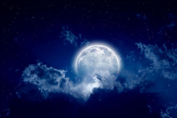 Что хотят увидеть на Луне?