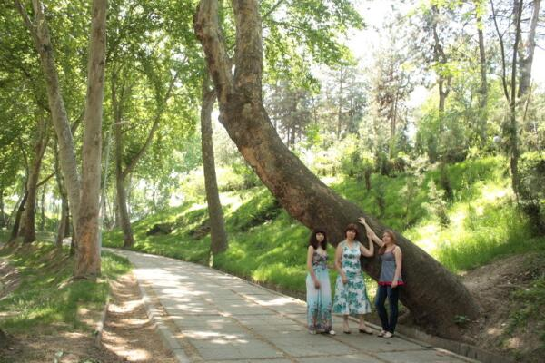 Сквер на реке Анхор
