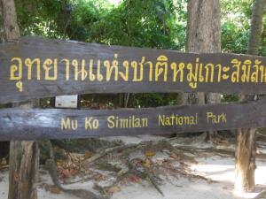 Острова Андаманского моря: какие они? Симиланы