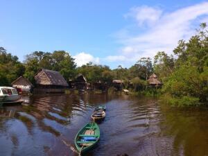 Джунгли Амазонки. Как создать уют в диких условиях?