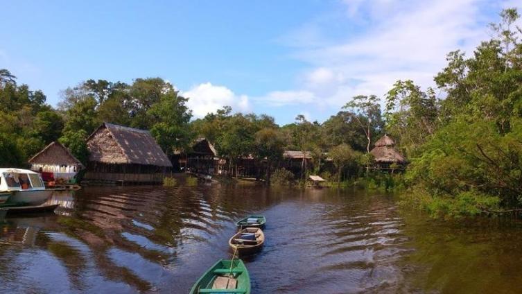 Лодж в джунглях Амазонки
