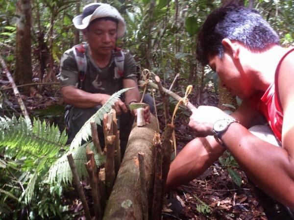 Курс выживания: учимся у индейцев делать ловушки