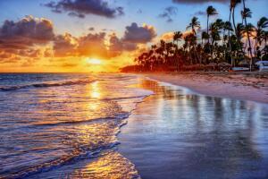 Чему учит океан?