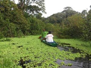 Как организовать себе приключение в джунглях Амазонки? 1. Финансы