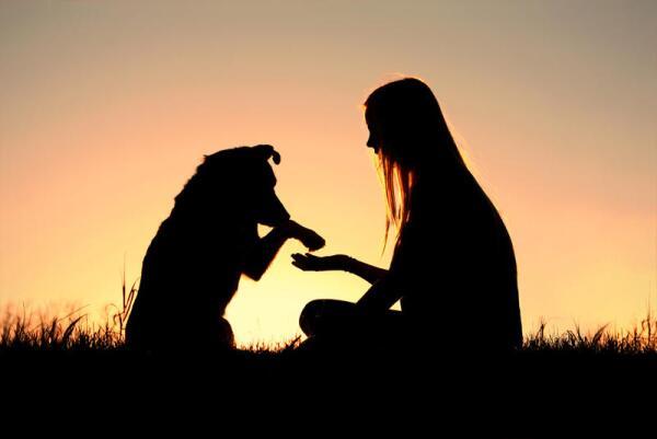 Кто ты - человек или собака?