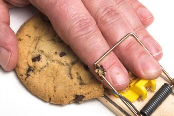 как заставить организм сжигать жир
