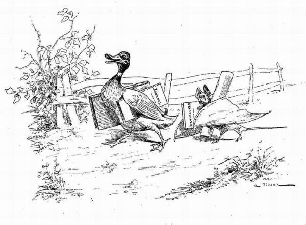 Иллюстрация де Вимара (1897 г.) к басне Жана де Лафонтена «Летучая Мышь, Куст и Утка».