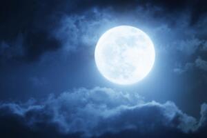 Как лунный календарь влияет на посадки?