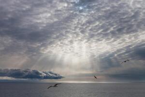 Какие необычные облака можно сфотографировать, если повезет?