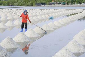Существуют ли особые виды пищевой соли?