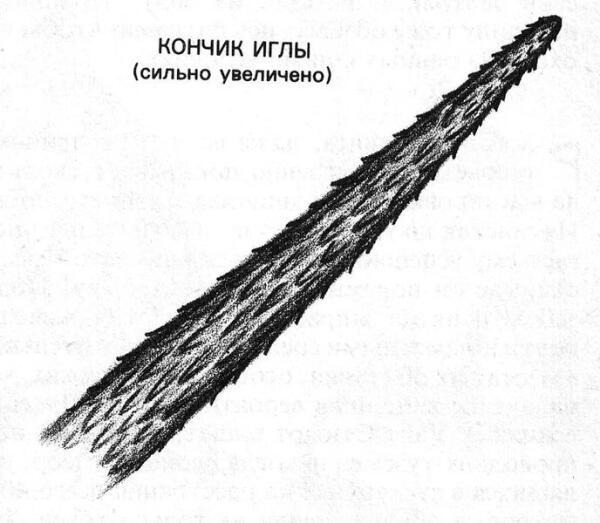 Иглы древесного дикобраза имеют зазубрины, поэтому, попав во врага, из-за сокращения мышц всё глубже уходят в тело.