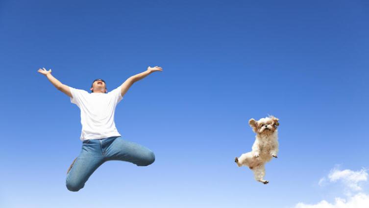 Как приручить счастье?