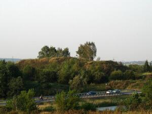 Что посмотреть в Подмосковье? Щербинское и Борисоглебское городища