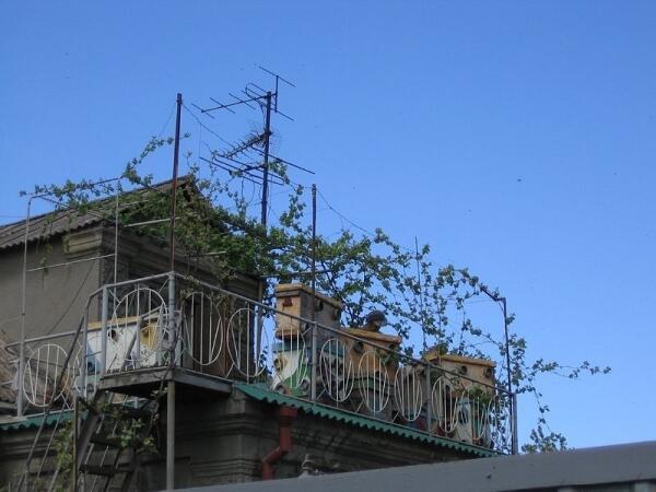 Пчелинвые ульи на балконе