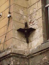Кошка на Малой Садовой. Стена выщерблена монетками, что в нее кидают.