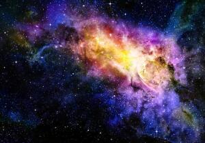 Какие организмы выживают в условиях космоса?