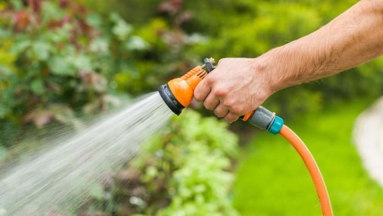 Как реже поливать грядки на своих шести сотках?