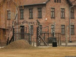 Как выживали в концлагерях? Часть 1: прибытие в лагерь