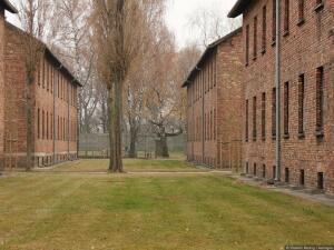 По ком звонит колокол? Памяти жертв Холокоста