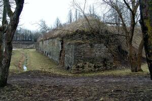 По какому плану и зачем построены Нарвские бастионы?