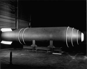 Сохранится ли на Земле жизнь после ядерной катастрофы?