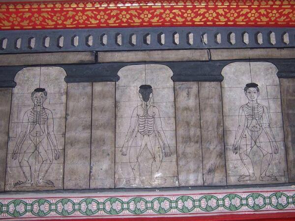Рисунки массажных линий на стенах древнего храма в Бангкоке