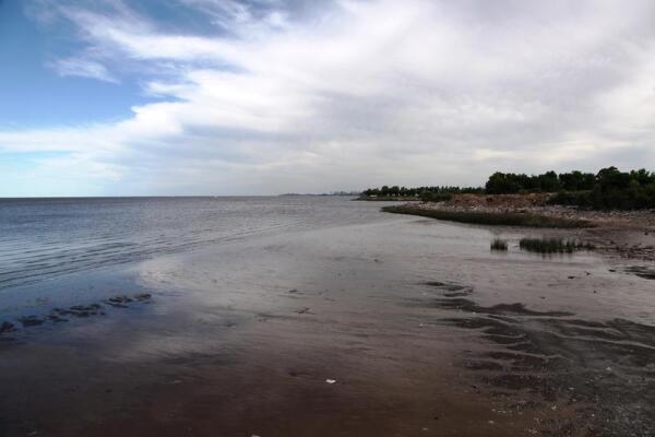 На берегу Ла Платы
